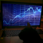 kot Schrödingera w strategii inwestycyjnej