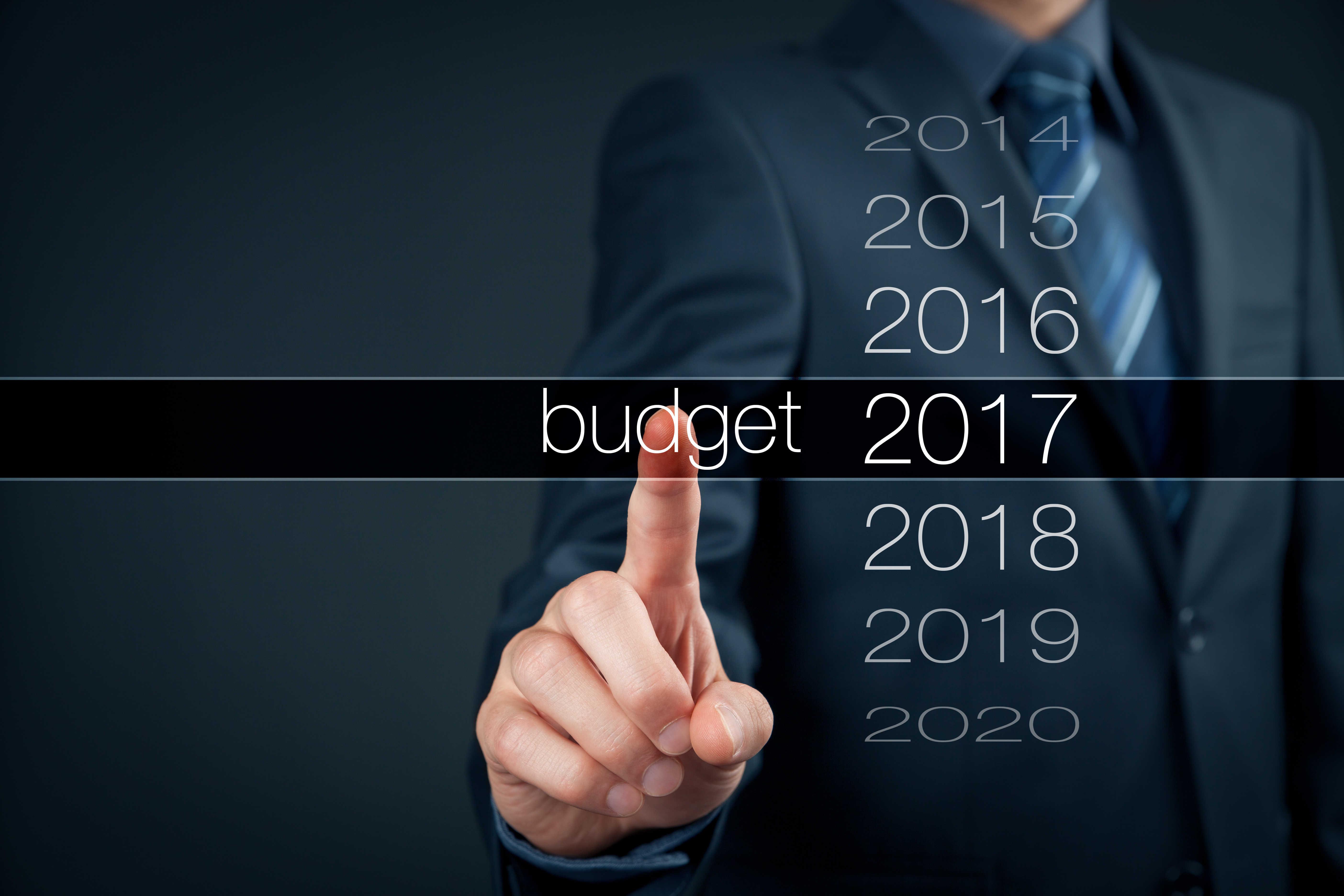 roczny budżet